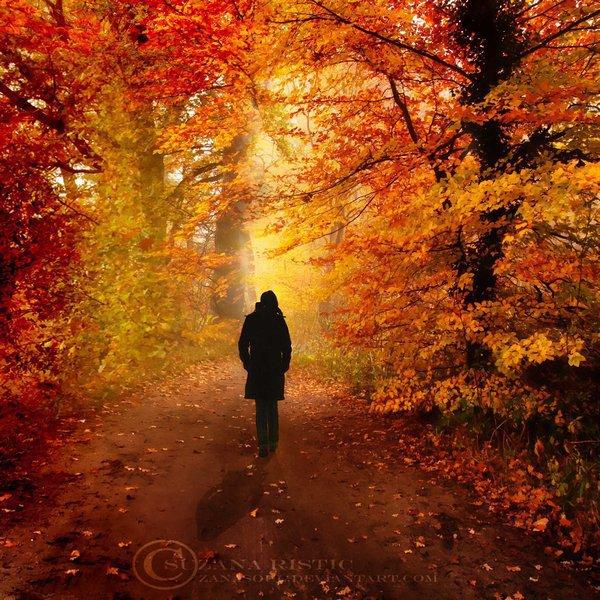 КЛЕНОВЫЙ ЛЕС Шелестит листва в кленовом лесу-кто-то шепчет слова, заплетая в косу,только этих слов не могу разобрать -это кара моя, иль моя благодать!Я не слушаю птиц. Не смотрю на стрекоз -все