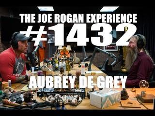 Joe Rogan Experience #1432 - Aubrey de Grey