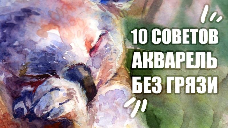 10 Лайфхаков Как Избежать Грязи В Акварели Секреты Рисования Акварелью